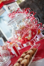 Wedding candy bar 974